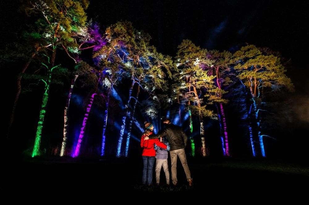 Enchanted Christmas at Westonbirt