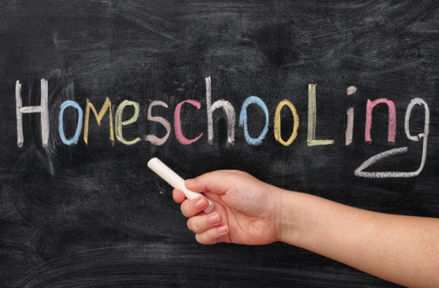 The Best Home-schooling Websites for Parents